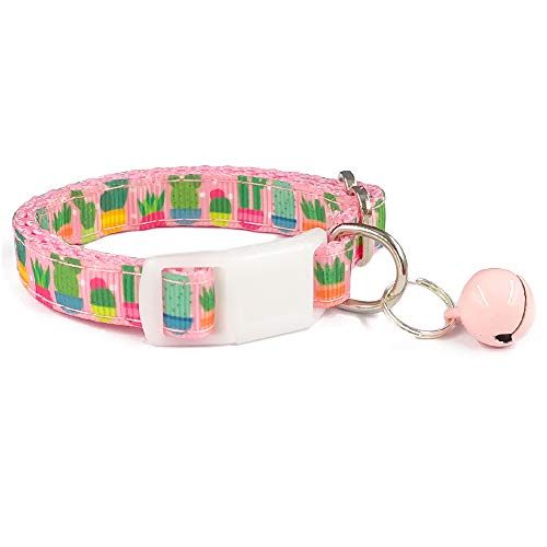 pink collar with cactus and succulent design and attached bell