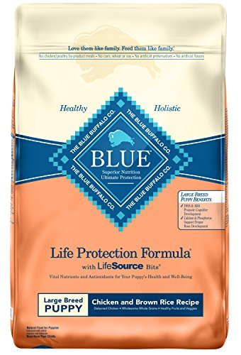 Blue Buffalo Life Protection Formula food for large breed puppies