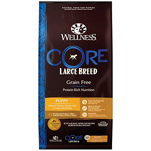 Wellness Core grain-free food
