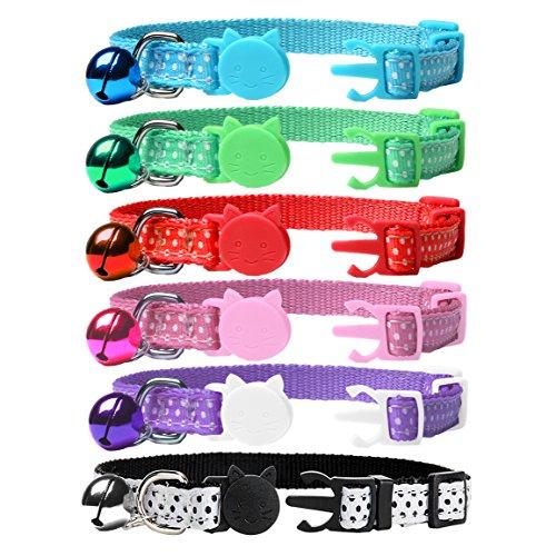 set of Expawlorer collars