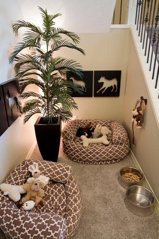 chambre pour chiens