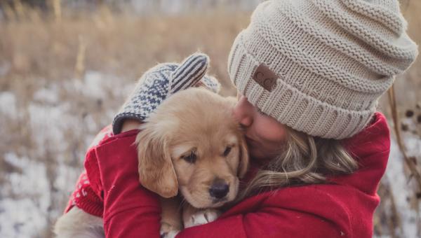 11 modi che hanno i cani per dirti ti voglio bene