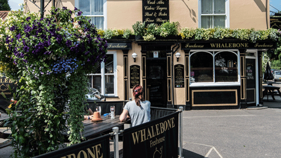 Top 10 Dog Friendly Pubs In Norwich