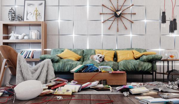 garder sa maison propre avec un chien
