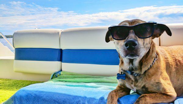 Zonder Stress Op Vakantie In 7 Stappen