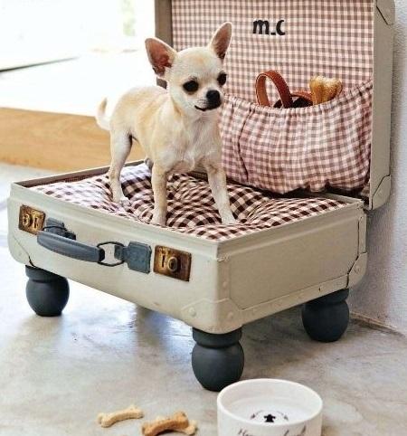 lit pour chien dans valise vintage
