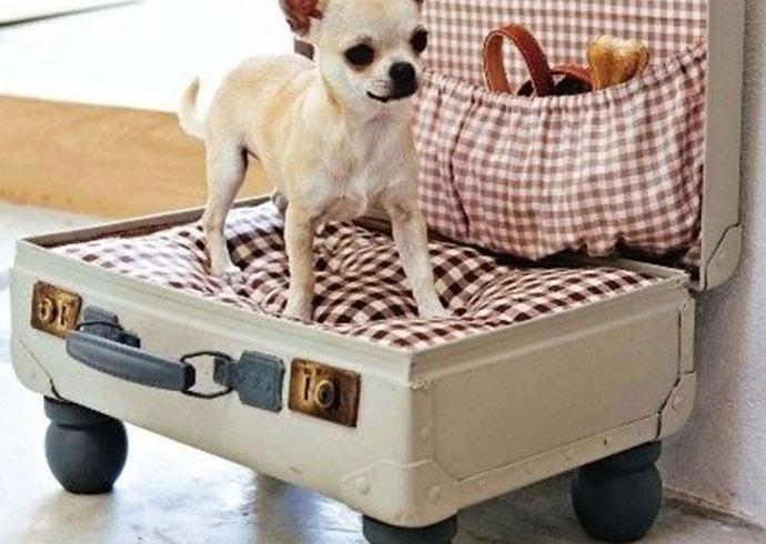 manualidades creativas para perros - cama para perros dentro de una maleta