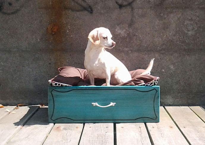 manualidades creativas para perros - cama para perros en una gaveta