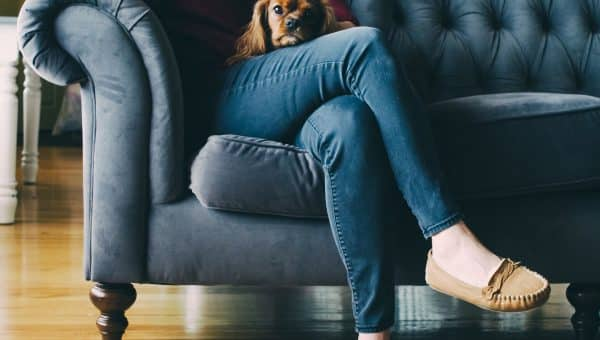 Can I Take My Dog to Therapy with Me? A Guide to the Pros and Cons