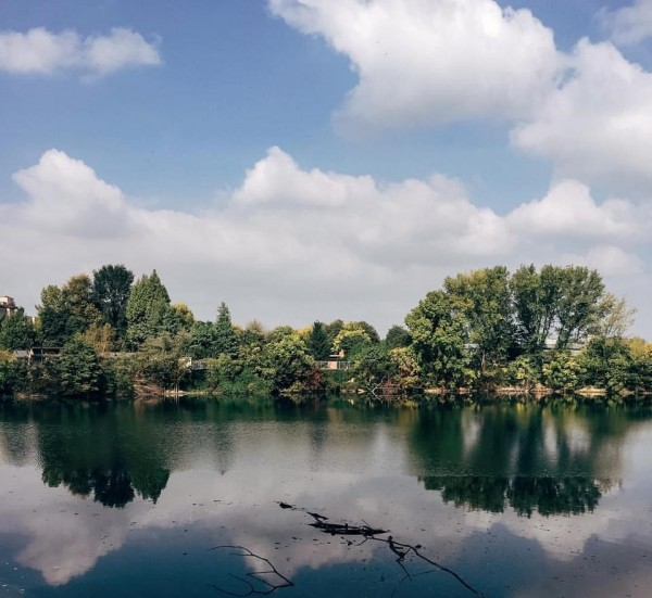 passeggiare con il tuo cane a milano laghetto europa san donato milanese
