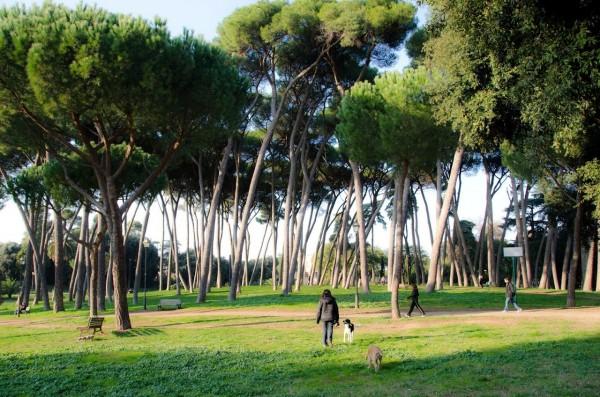 passeggiare con il tuo cane a roma villa pamphilj
