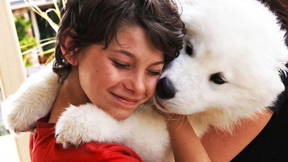 enfant avec son chien