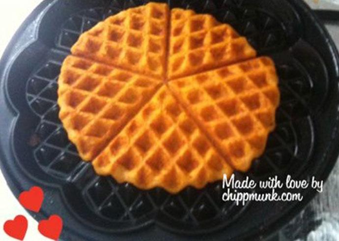 pumpkin_dog_waffles dog breakfast