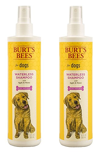 7 Best Dry Dog Shampoos   The Dog People by Rover com