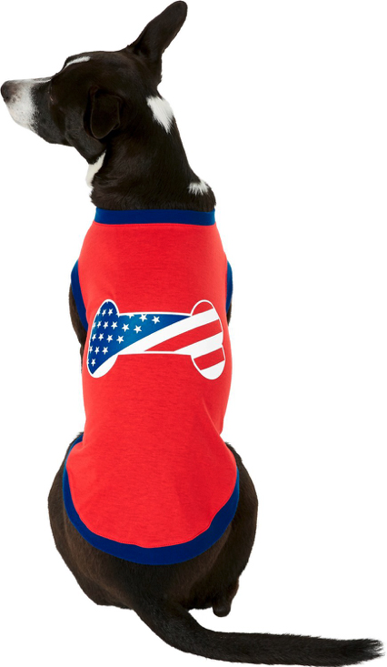 pup wearing 4th of July dog clothing, red with stars/stripes dog bone on back
