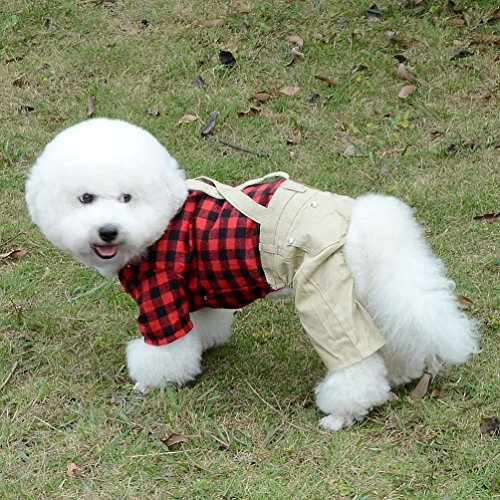 d7012ee6d569 Cute dog outfits are a classic gift for people whose pets wear clothes, and  this plaid shirt and overalls set is darling.