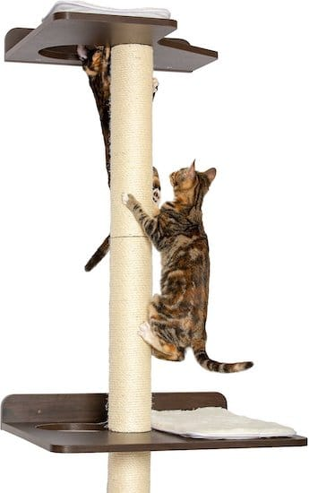 Pet Fusion wall-mounted scratcher with platforms