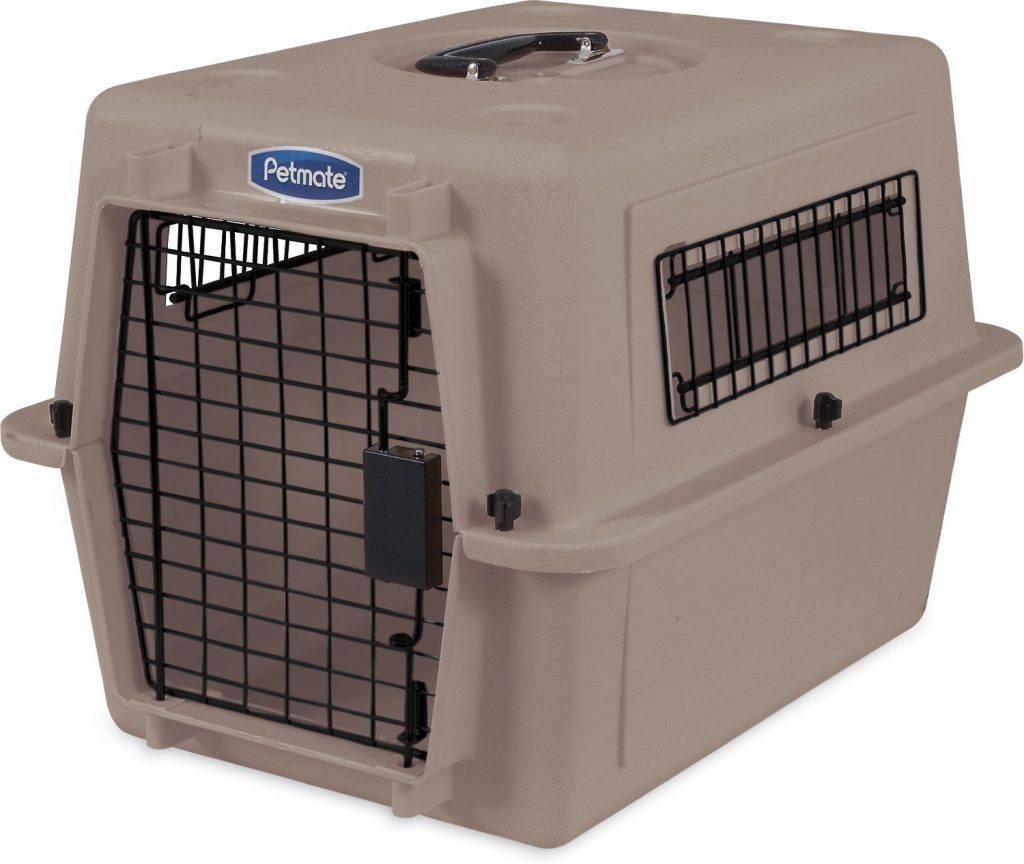 Petmate small cat carrier