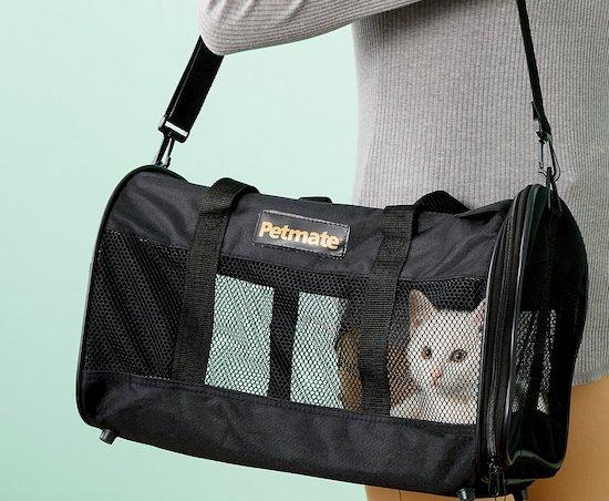 Petmate cat carrier