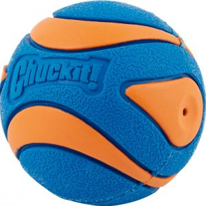Chuckit squeaker ball dog pool toy