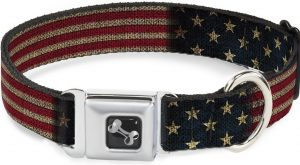 Buckle-Down vintage-style American flag dog collar