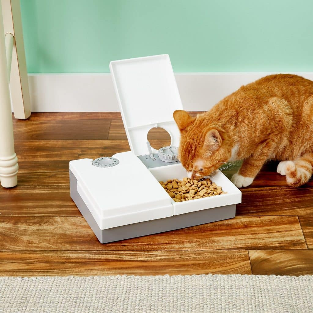 Cat Mate two-bowl system