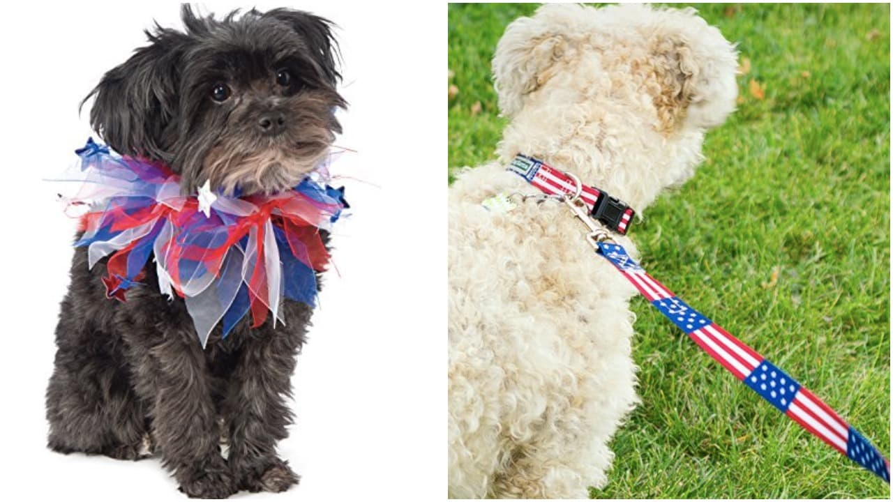 bluedog puppy /& owner gift red I/'m A Schnoodle Bandanacollar neck tie