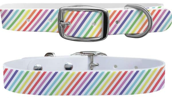 19 Rainbow Dog Collars for Every Type of Dog