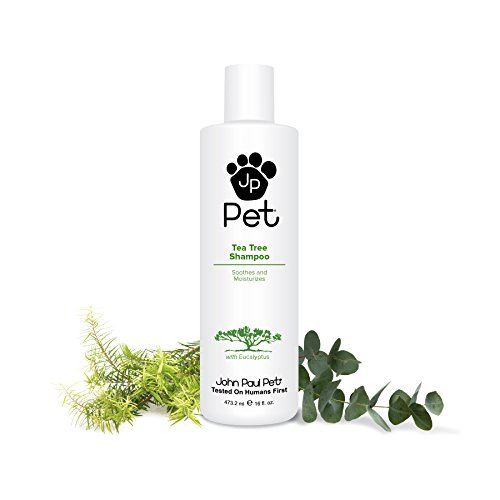 20 Best Dog Shampoos for Sensitive Skin | The Dog People by