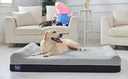 17 Best Dog Beds for Large Dogs in 2019 | Top Picks from the Dog People
