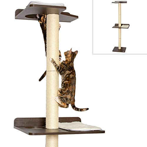 19 Modern Cat Trees To Immediately