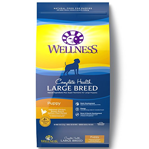 bag of Wellness Complete large-breed puppy food