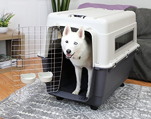 Hard and Soft-Sided Crates for Big Dogs – Taynews com