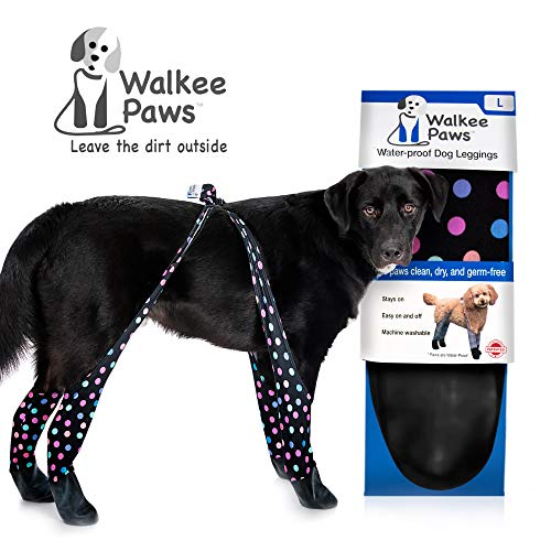 Summer Dog Shoes | Dog Paw Protection for Hot Pavement