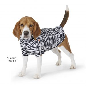 In the Company of Dogs Paikka zebra protective shirt summer dog top