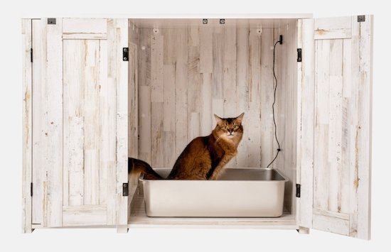 cat inside Litter Robot credenza