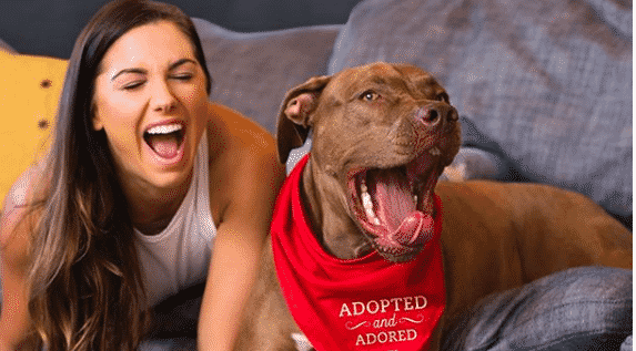 Meet the Dogs (and Cats) of the US Women's Soccer Team