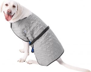 dog wearing TechNiche International evaporative cooling coat in gray