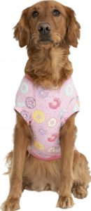 Chewy Canada Pooch donut print tee summer dog top