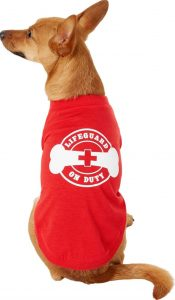 Chewy Frisco lifeguard on duty summer dog top