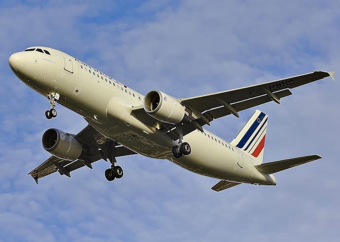 air france animaux