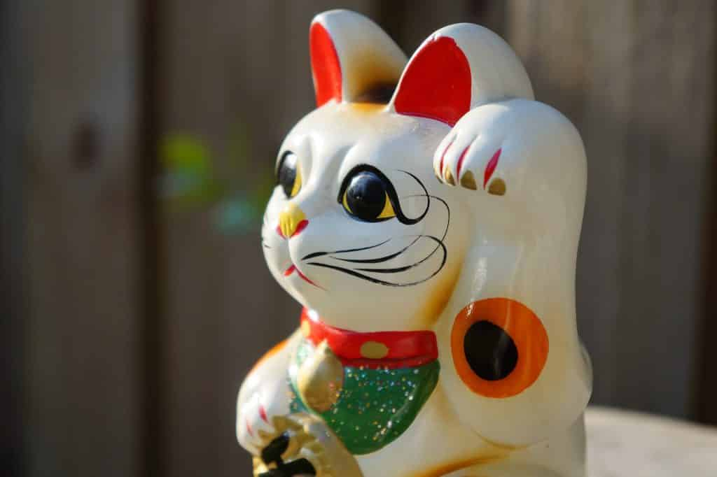 300+ Japanese Cat Names For Your Cuddly Cat | The Dog People