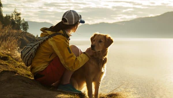 Best Dog-Friendly Hikes Near Vancouver