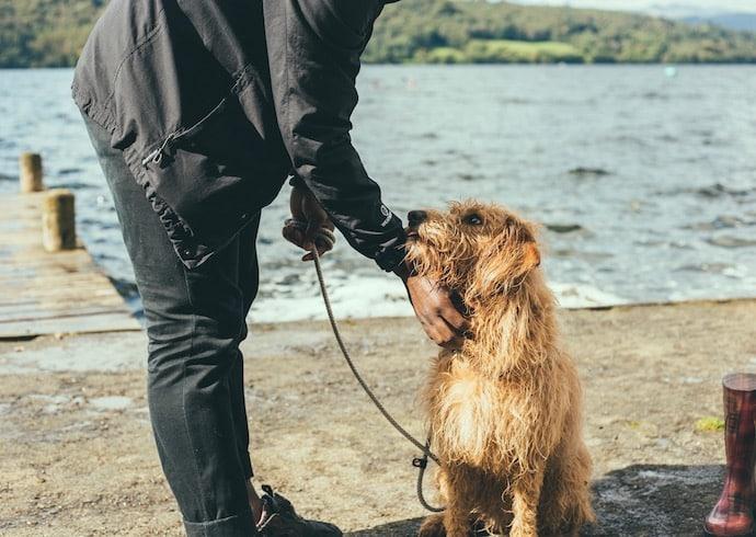 un homme et son chien en promenade