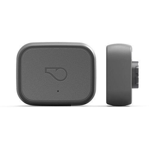 Whistle 3 dog GPS collar