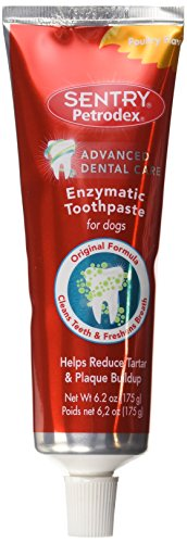 Sentry Petrodex Enzymatic dog toothpaste