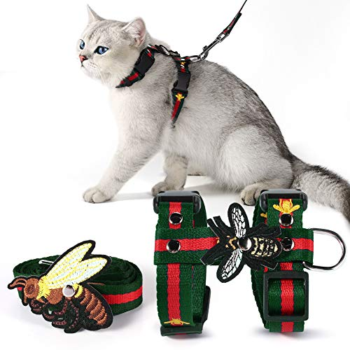 cat wearing embroidered harness and leash