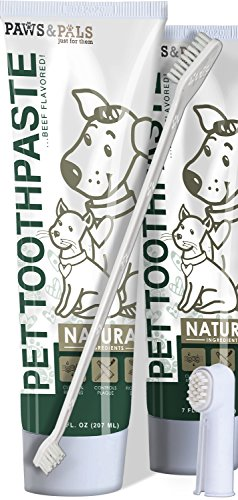 Paws & Pals dog toothbrushes and toothpaste