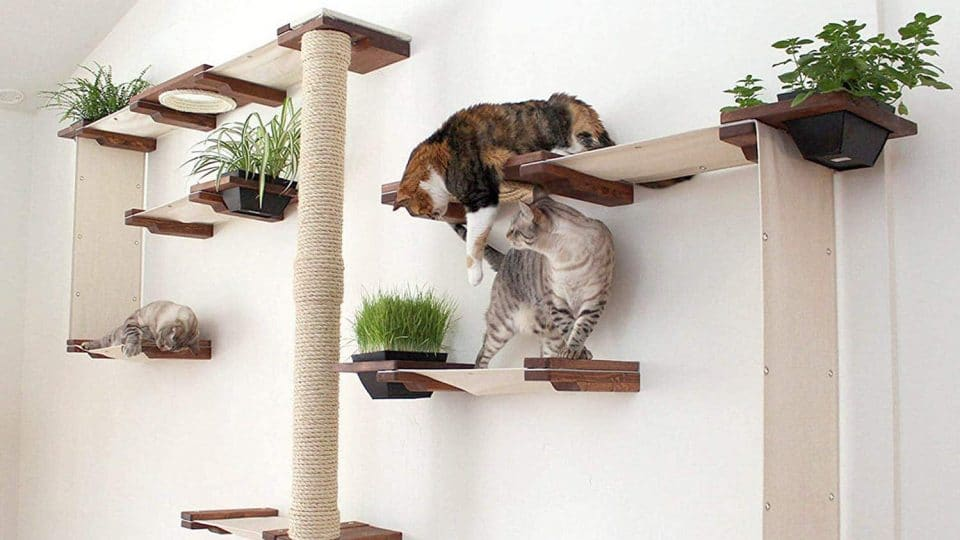 Modern Cat Trees To Entertain Your Cat And Enhance Your Decor