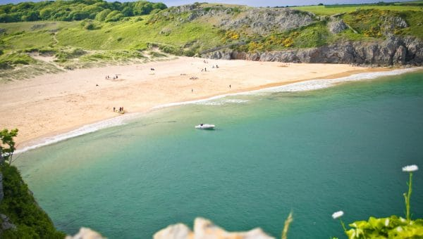 Top 10 Dog-Friendly Beaches in Wales